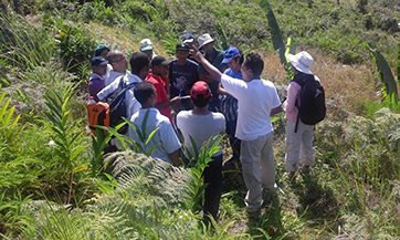 One instructor explaining technical aspects near a plot within the secondary forest