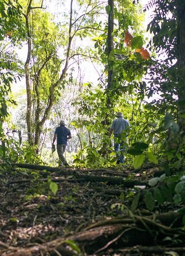 People at the Heart of Sustainable Forest Management